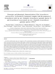 Genotypic and phenotypic characterization of the Acinetobacter ...