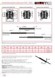 Guide telescopiche a sfere serie TSQ.., TSQX.. - T RACE SpA