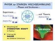 PHYSIK der STARKEN WECHSELWIRKUNG - T39