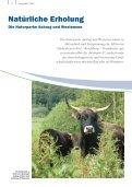 Gastgeber 2014 - am Nord-Ostsee-Kanal! - Seite 6