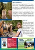 Tipp - am Nord-Ostsee-Kanal! - Seite 6