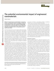 The potential environmental impact of engineered nanomaterials