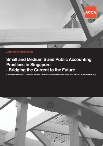 Small and Medium Sized Public Accounting Practices in ... - ACRA