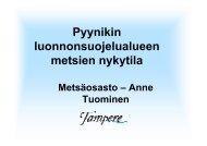 Pyynikin luonnonsuojelualue hoito - Tampere