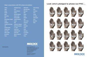 Distributor Brochure - Moldex