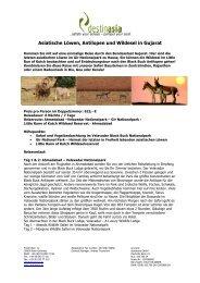 Asiatische Löwen, Antilopen und Wildesel in ... - Destinasia GmbH
