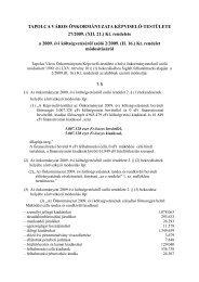 a 2009. évi költségvetéséről szóló 2/2009. - Tapolca