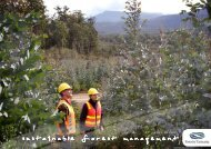 to download (10 MB) - Forestry Tasmania