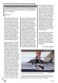 Crazy Group in Egypt - Tauchclub Triton - Bad Vilbel eV - Page 6