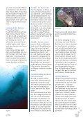 'Hailife' auf den Galapagos - Tauchclub Triton - Bad Vilbel eV - Page 3