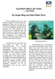 Ein langer Weg zum Open Water Diver - Tauchen als Therapie