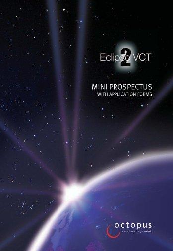 MINI PROSPECTUS - The Tax Shelter Report