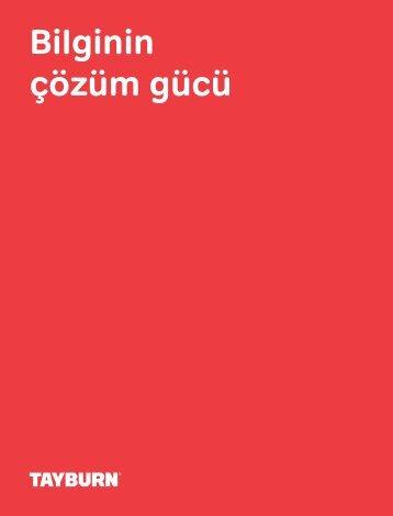 Tayburn 2012 - Raporlama, Yatırımcı İlişkileri ve Editörlük