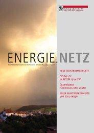 Energie.Netz 2011 August - Technische Betriebe Wil