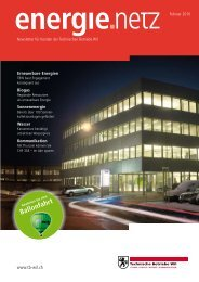 Energie.Netz 2010 Februar - Technische Betriebe Wil