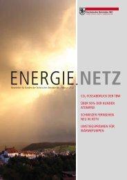 Energie.Netz 2012 Februar - Technische Betriebe Wil
