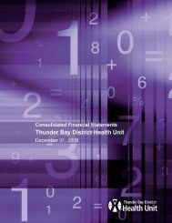 2008 Financial Statements - Thunder Bay District Health Unit