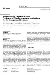 The Hepatitis B Virus Pregenome: Prediction of RNA Structure ... - TBI