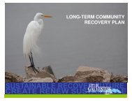 long-term community recovery plan - Tampa Bay Regional Planning ...