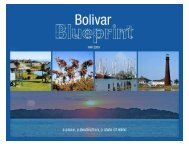 Bolivar Blueprint Electronic - Tampa Bay Regional Planning Council