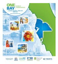 ONE BAY Vision Brochure - Tampa Bay Regional Planning Council
