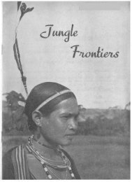 jungle frontiers - IndoChina1911