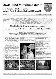 Amtsblatt Juni 2013