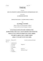 Analyse quantitative des composantes temps-echelle de l'EGC à ...