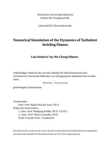Numerical Simulation of the Dynamics of Turbulent Swirling Flames