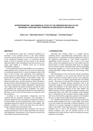 1 ABSTRACT An interferometric study and a numerical simulation ...