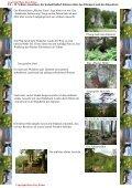 Bilderserie der Blumenvielfalt am Tannberg - Hans - Jörg Eitner - Seite 3
