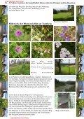 Bilderserie der Blumenvielfalt am Tannberg - Hans - Jörg Eitner - Seite 4
