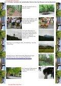 Bilderserie der Blumenvielfalt am Tannberg - Hans - Jörg Eitner - Seite 7