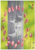 Catalogue de viande - Beauval - Page 6