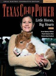 June 2004 - Texas Co-op Power