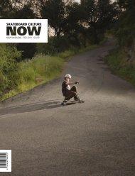 Skateboard culture NOW