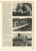 Juli - THW-historische Sammlung - Seite 7
