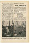 195805.pdf - Page 7