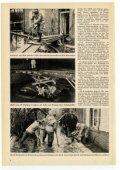 Januar - THW-historische Sammlung - Page 4