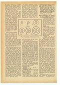 195704.pdf - Page 4