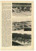 August - THW-historische Sammlung - Page 5