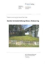 Projektbeschrieb (136 KB) - Tiefbauamt - Kanton Basel-Stadt