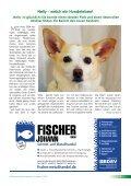 Download - Tierheim-gelting.de - Seite 5