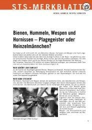 Merkblatt Bienen ... - Schweizer Tierschutz STS