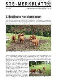 Schottische Hochlandrinder - Schweizer Tierschutz STS