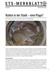 Ratten in der Stadt - Schweizer Tierschutz STS