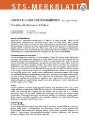 Kaninchen und Zwergkaninchen - Schweizer Tierschutz STS