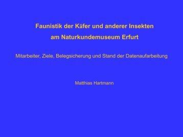Faunistik der Käfer und anderer Insekten am Naturkundemuseum ...