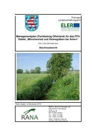 Fachbeitrag Offenland - Thüringer Landesanstalt für Umwelt und ...