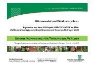 Klimawandel und Waldnaturschutz - Thüringer Landesanstalt für ...